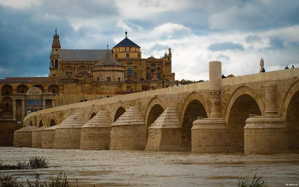 Le pont romain de Cordoue, en Espagne : le long pont de Volantis