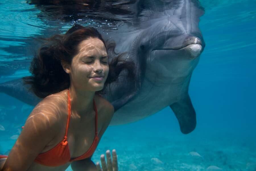 Danser avec les dauphins