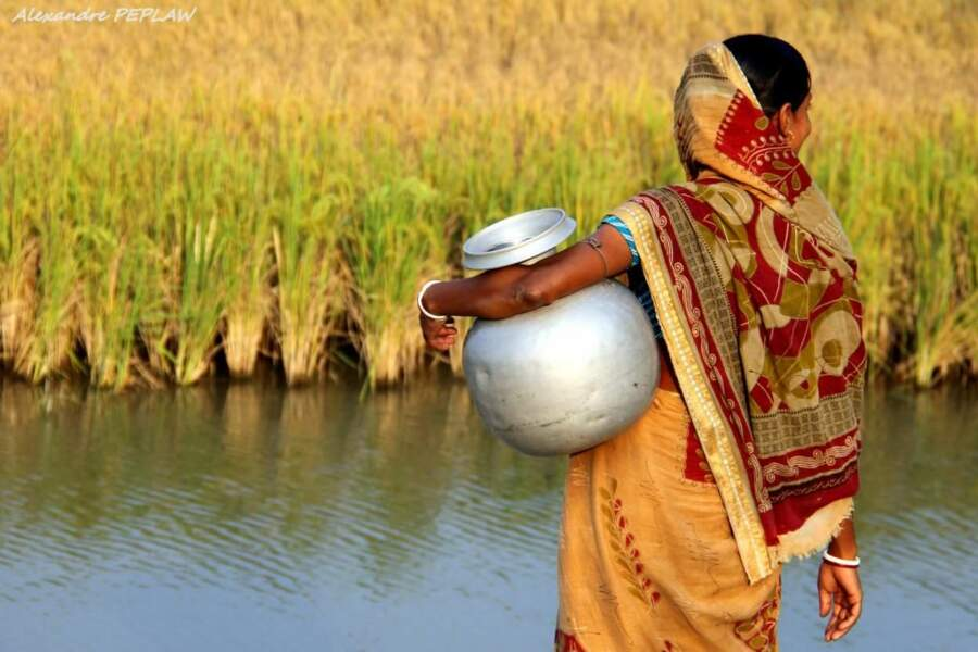 Photo prise en Inde par le GEOnaute : alex photos du monde