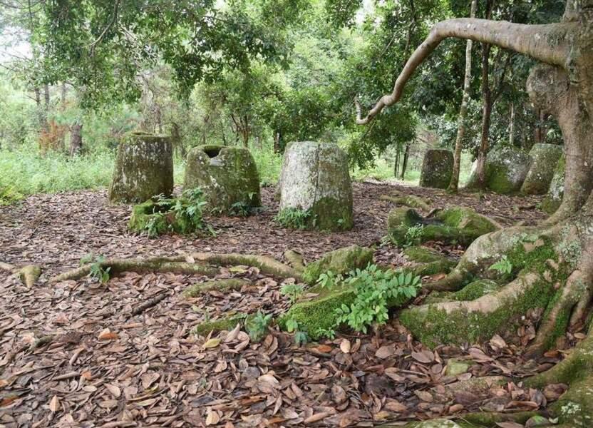 Le site des mystérieuses jarres mégalithiques de Xieng Khouang au Laos