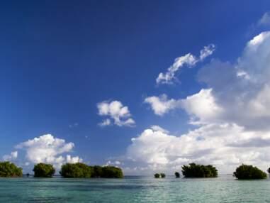 10 choses essentielles à découvrir en Guadeloupe