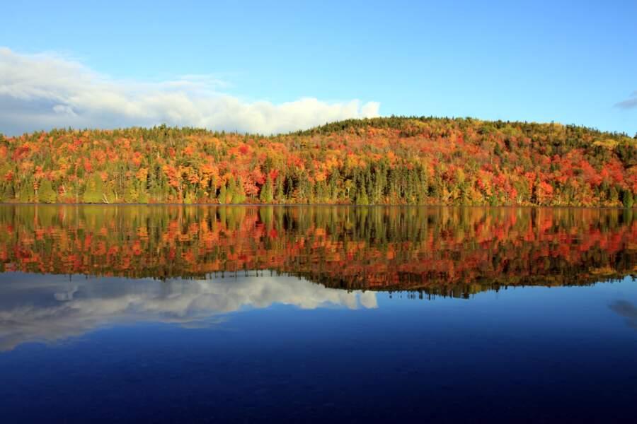 En octobre, c'est l'été indien au Québec !