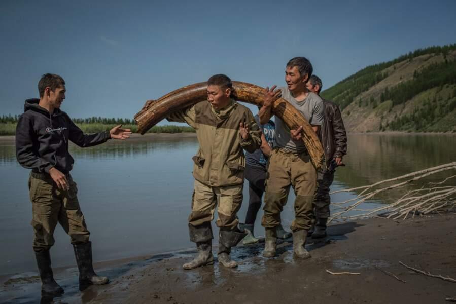 Pour le bonheur des chasseurs d'ivoire