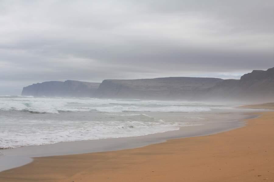 Balade sur une plage rousse