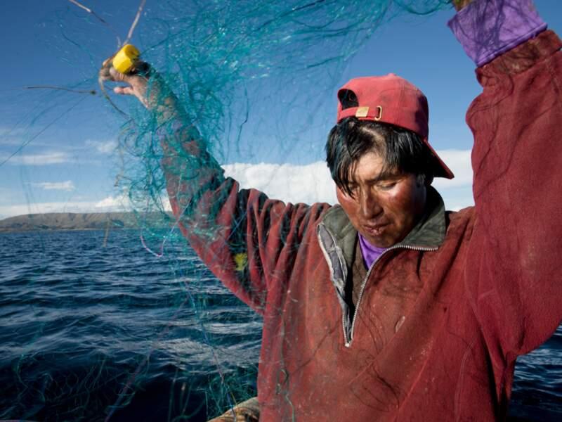 Truites et poissons-chats ont décimé les espèces endémiques du lac