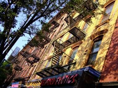 Les plus belles photos de la Communauté GEO : destination New York