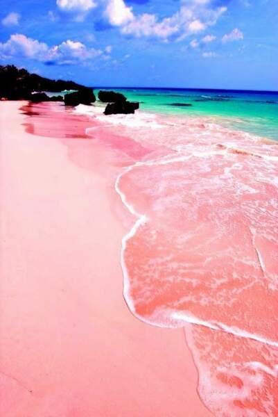 Les sables roses des Bahamas