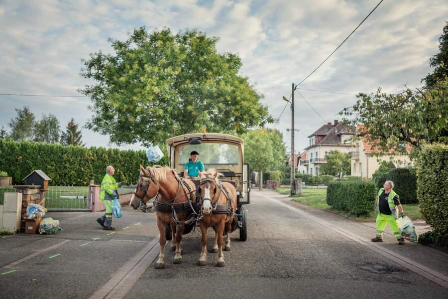 À Phalsbourg, c'est poubelle la vie