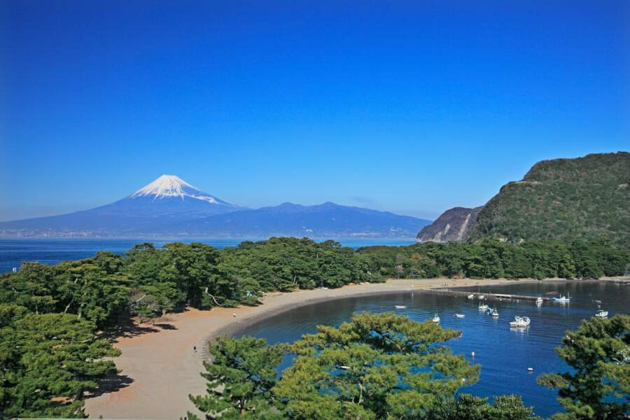 Baie de Suruga, Japon