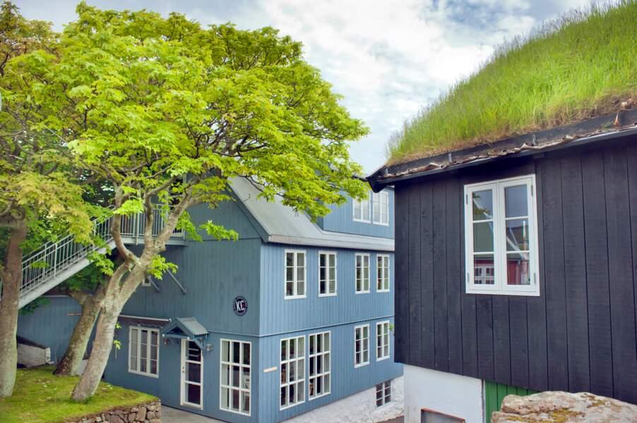 Des toits végétalisés