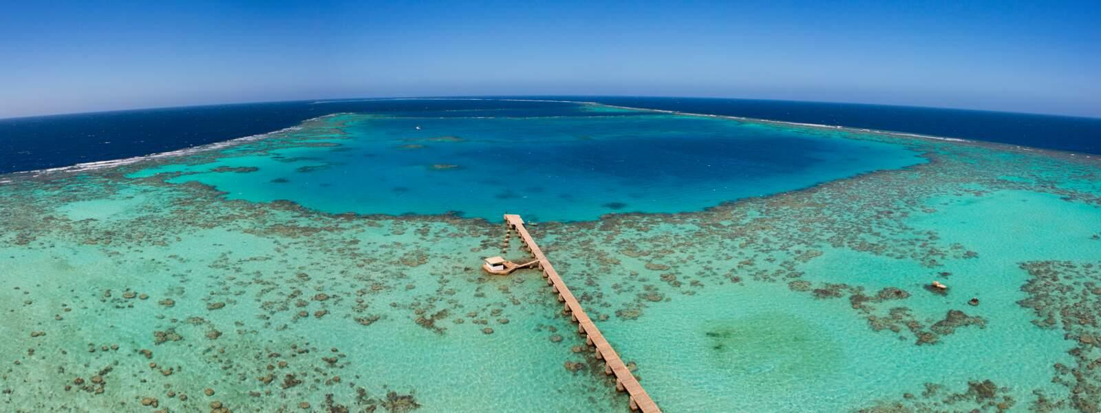 Parc national marin de Sanganeb et Parc national marin de la baie de Dungonab – île de Mukkawar, au Soudan