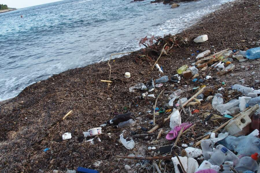 Plage croate sur l'île de Korcula