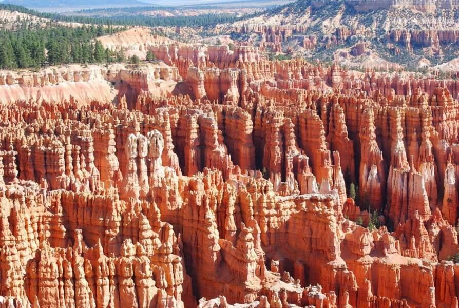 Dans le parc national de Brice Canyon, aux Etats-Unis, par le GEOnaute marc8313