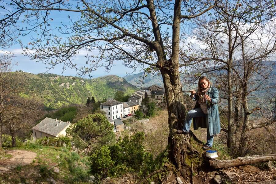 Les châtaigniers de Pianu (Haute-Corse)