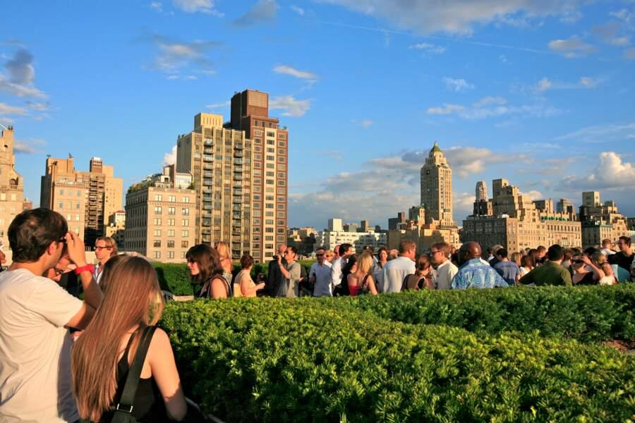 Boire un verre dans un Rooftop Bar