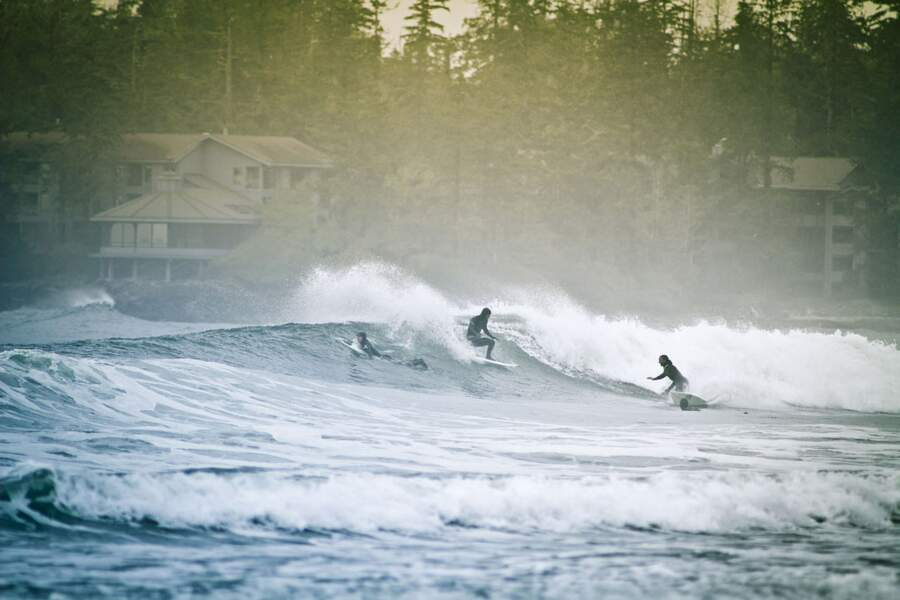 Tofino, capitale canadienne du surf