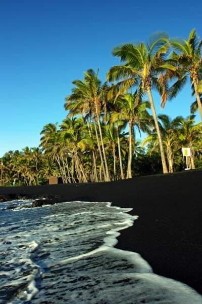La plage basaltique de Punalu'u à Hawaï
