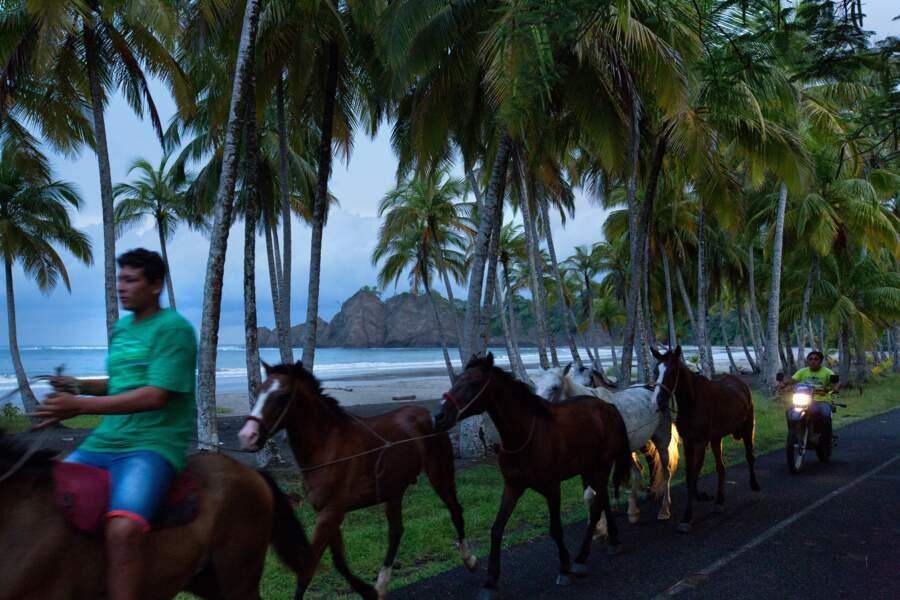 Plages, paysages et climat de rêve dans le province de Guanaste