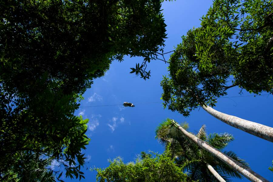 Un voyage dans les airs