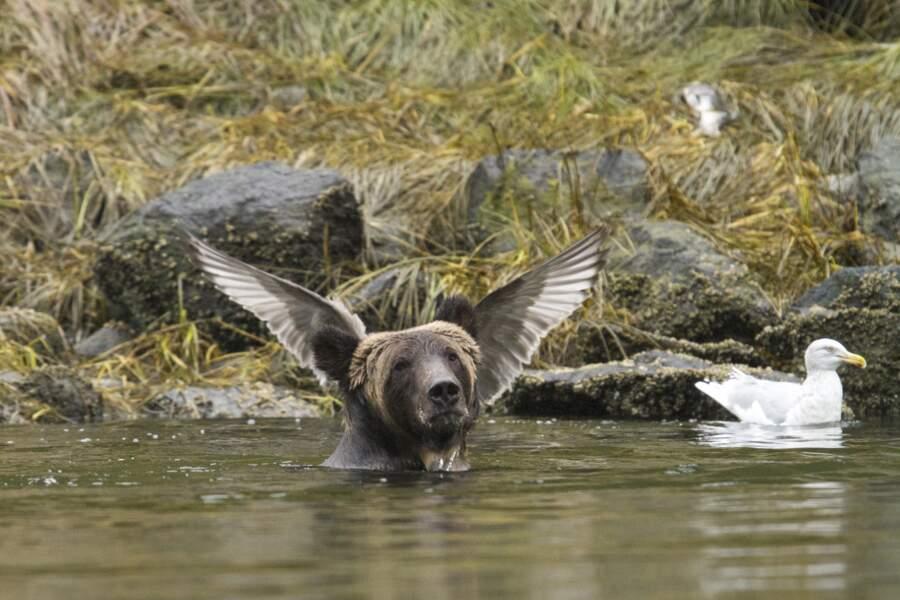 I belieeeeeeeeve I can fly !