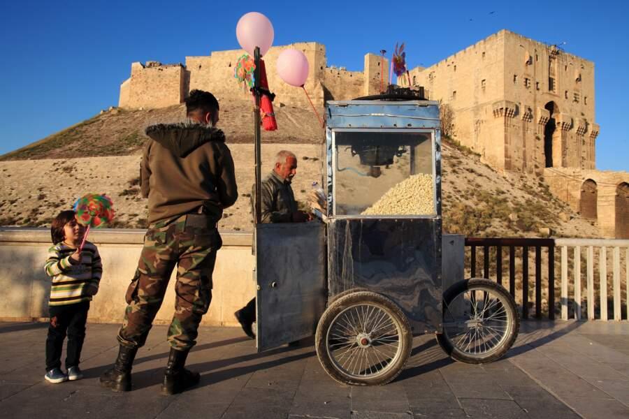 Le palais médiéval fortifié d'Alep