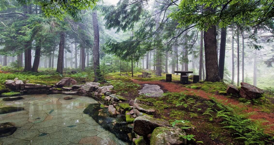 Skylands, îles des Monts Déserts, Maine, Etats-Unis