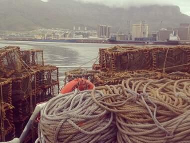 Tristan da Cunha, reportage au bout du monde