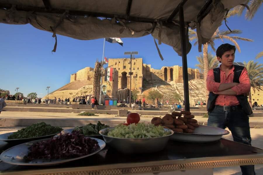 La vie reprend à Alep