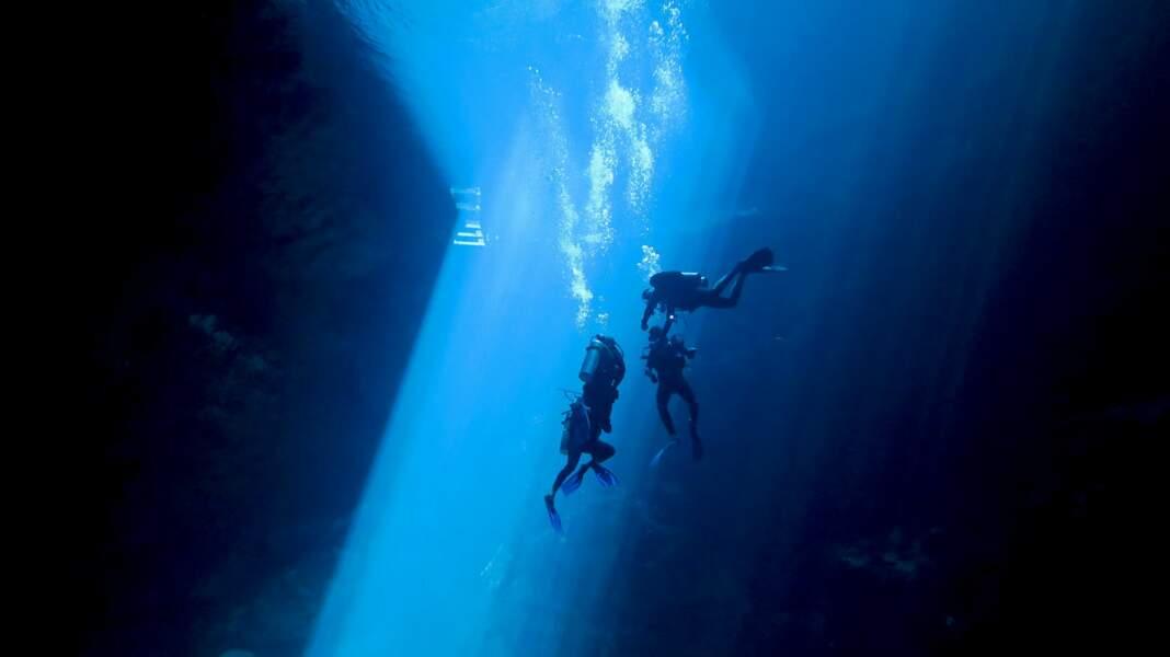Plongée dans un cénote, au Mexique