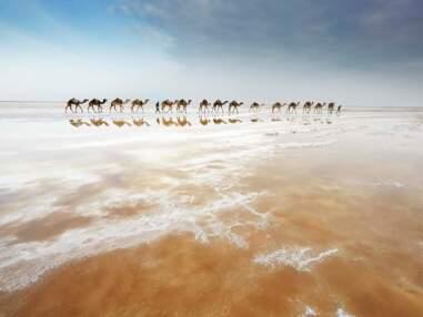 En Ethiopie, à travers le Danakil, terre de sel