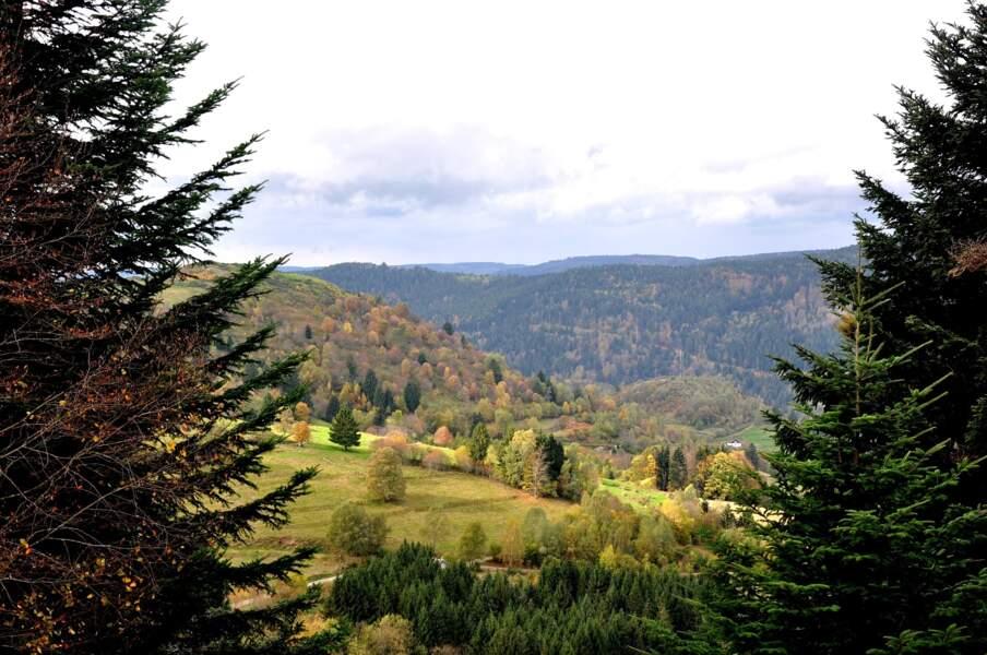 Le Parc naturel régional des Vosges du Nord