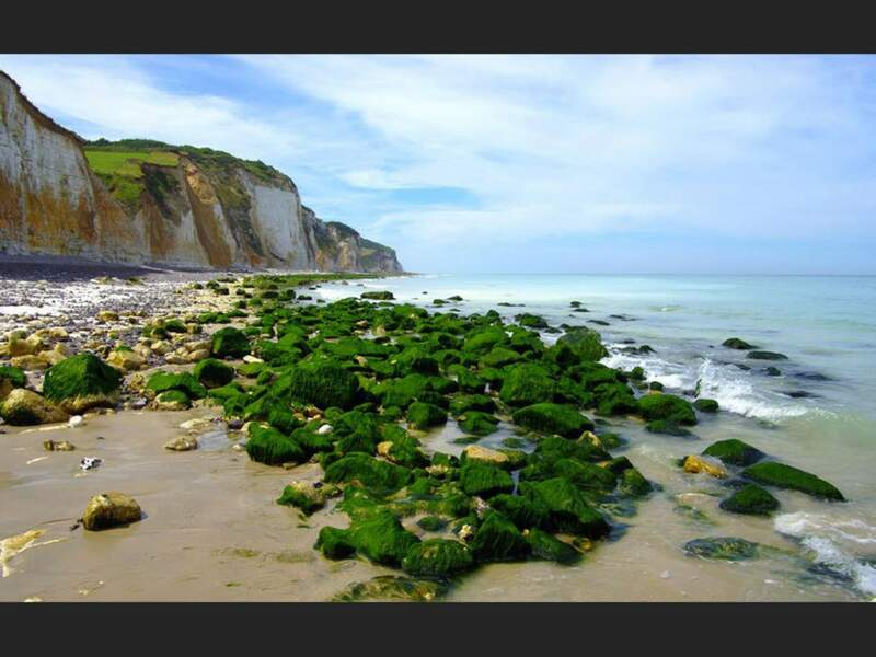 Diaporama n° 14 : Normandie : la côte sauvage du Pays de Caux