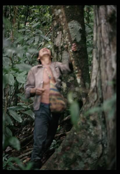 """""""Penser avec et comme les forêts"""""""