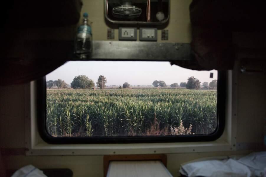 Wagon avec vue