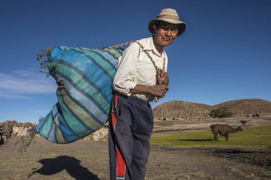 Saisonniers nomades