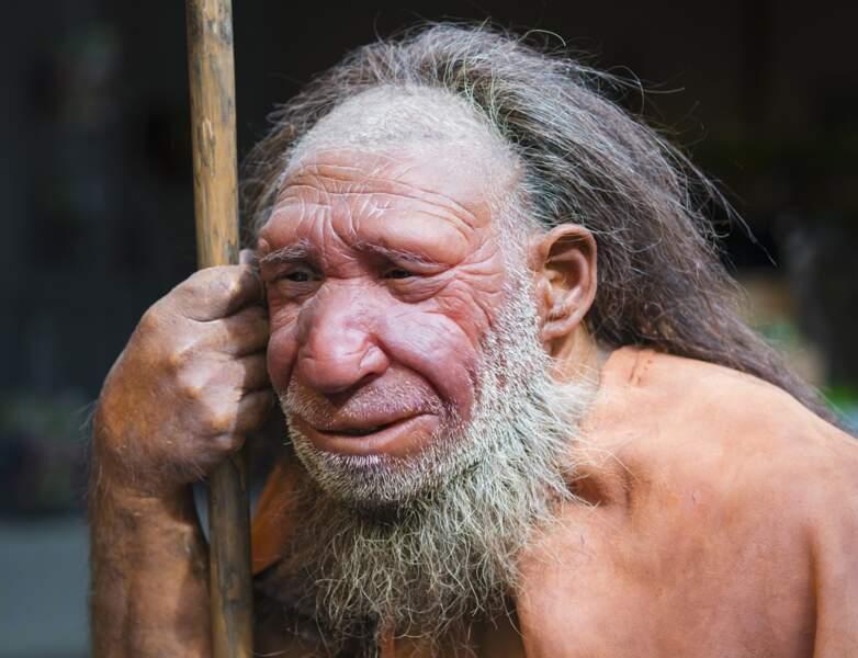 2014 – Des gènes de Neandertal chez nos contemporains