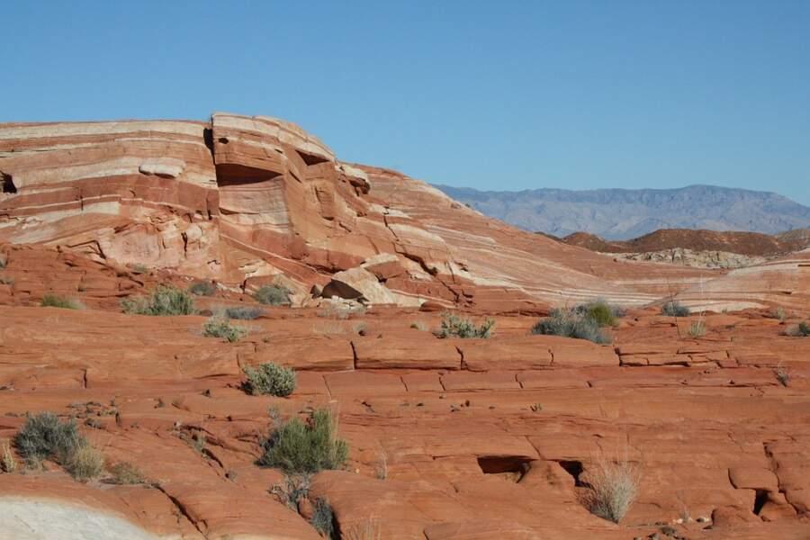 The Wave : préserver ce joyau entre Utah et Arizona