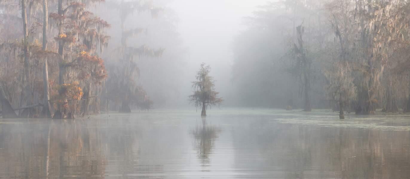 Roberto Marchegiani, 3ème prix de la photographie de l'année
