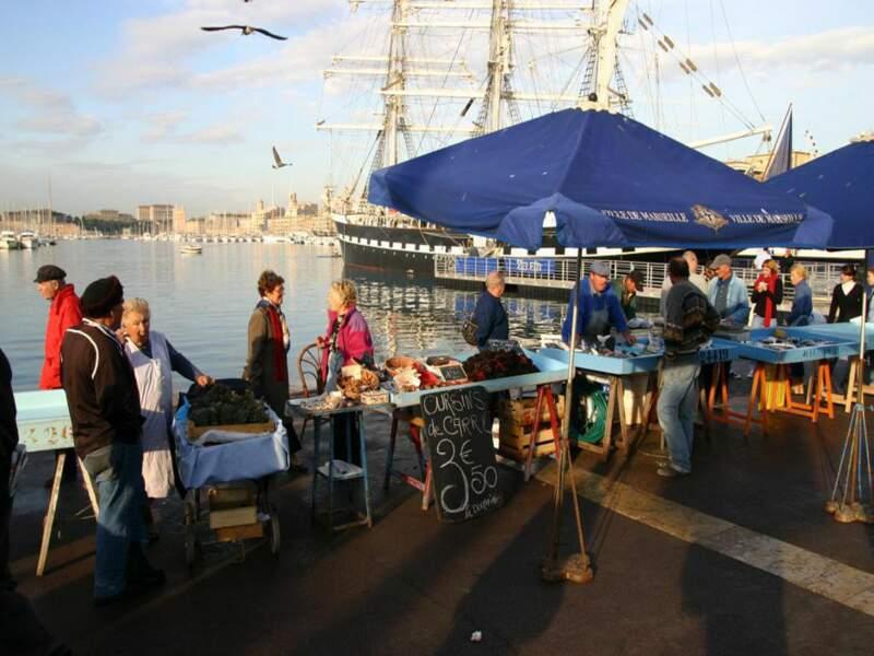 Diaporama n°8 : A Marseille, avec les pêcheurs du Vieux Port