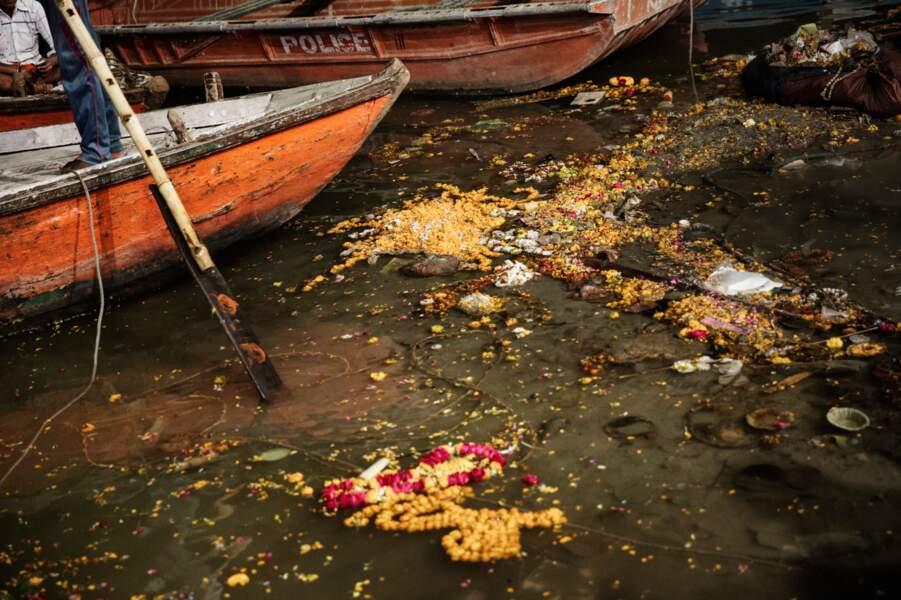 Les eaux du Gange