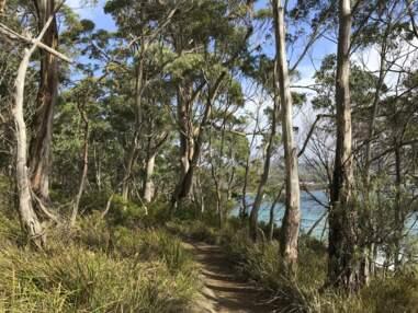 10 expériences à vivre en Tasmanie
