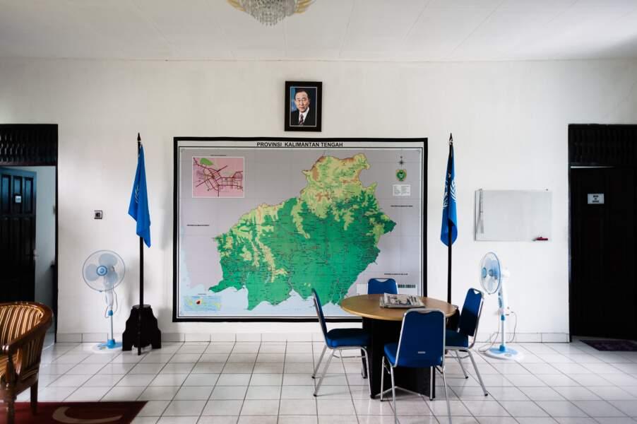 Bornéo, laboratoire de la lutte contre la déforestation ?