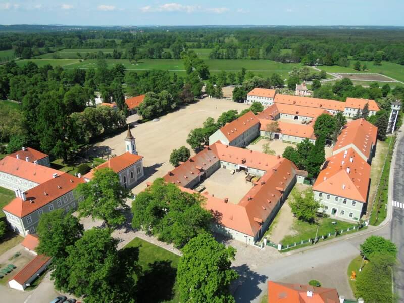 Paysage d'élevage et de dressage de chevaux d'attelage cérémoniels à Kladruby nad Labem en République tchèque