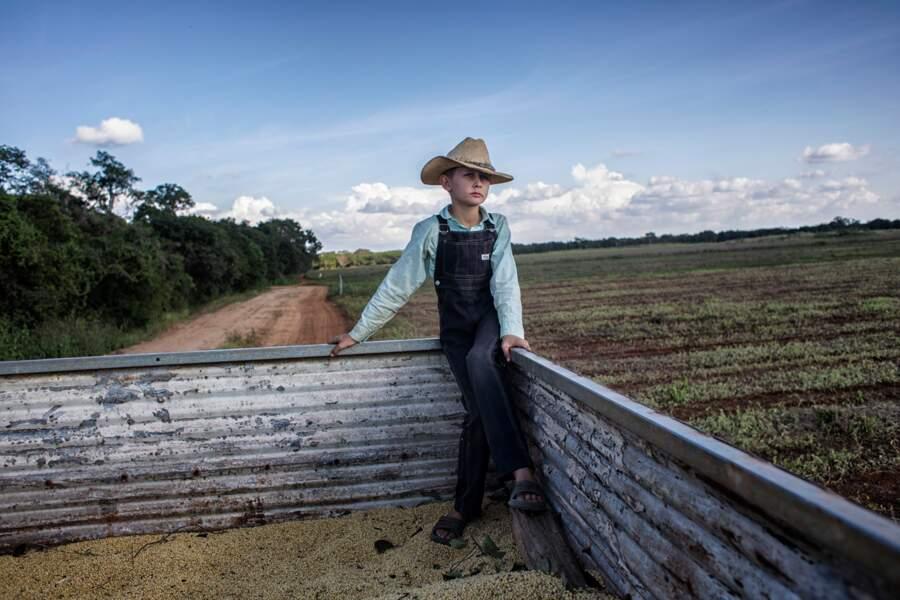 """Les Mennonites cultivent du soja dans le Yucatán, au grand dam des apiculteurs mayas – Catégorie """"environnement"""""""