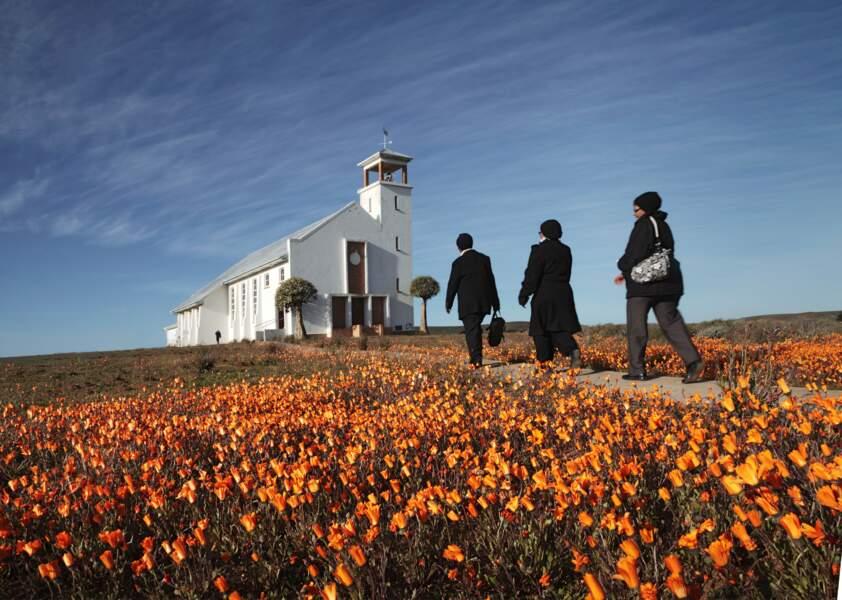 L'église de Loeriesfontein