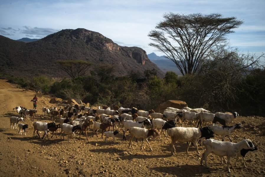 Chez les Samburu