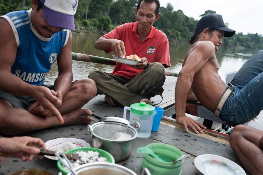 Transport de grumes sur le fleuve Lamandau