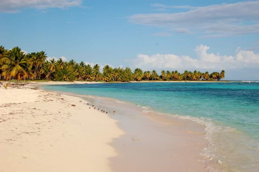 Filer en bateau jusqu'à l'île Saona