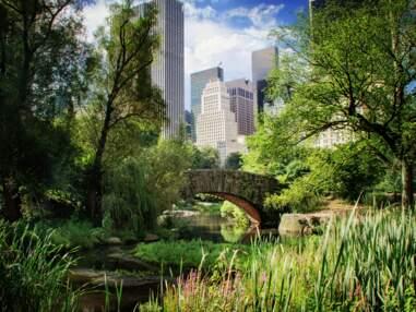 8 parcs et plages pour visiter New York version nature
