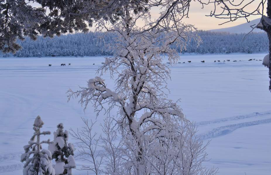 Lac Ounas en Finlande par Pascal Gaudry / Communauté GEO